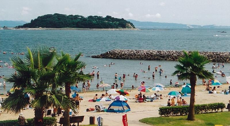 白浜 ビーチ パーク